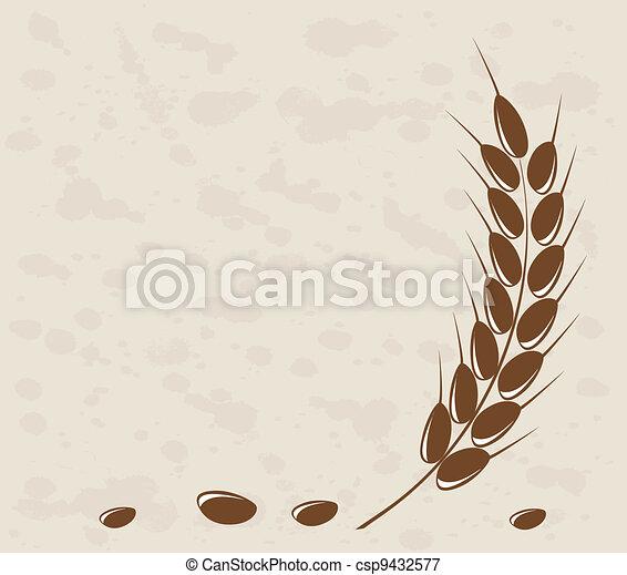 Ear of wheat in the grange backgrou - csp9432577