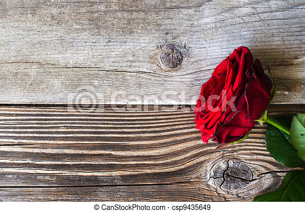 Red rose over wood - csp9435649