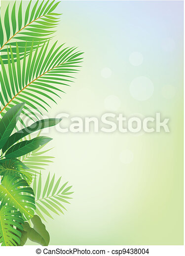 Tropical forest background  - csp9438004