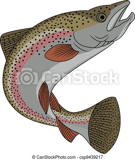 Trout fish  - csp9439217