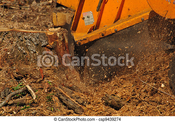 Stump Grinder Close-up