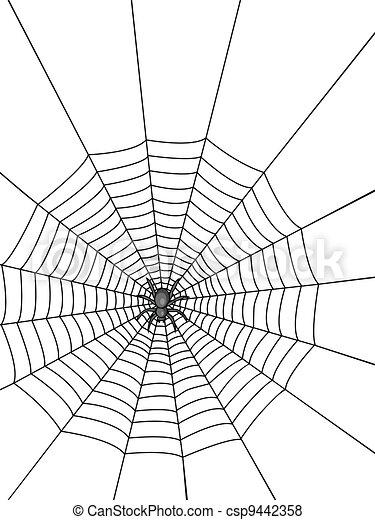 Spider Web - csp9442358