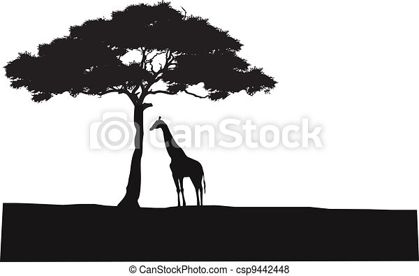 Safari background silhouette - csp9442448
