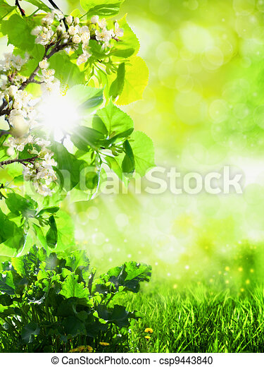 Abstract summer backgrounds with green grass and bokeh - csp9443840