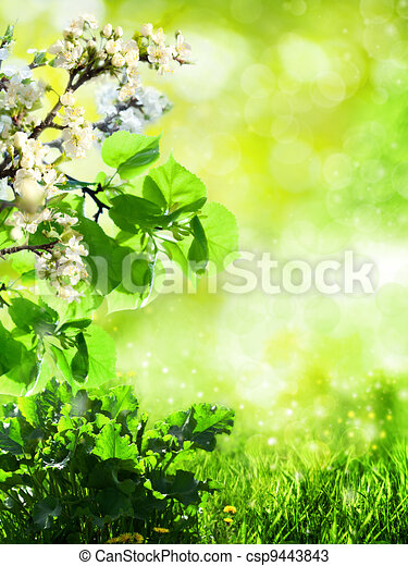 Abstract summer backgrounds with green grass and bokeh - csp9443843