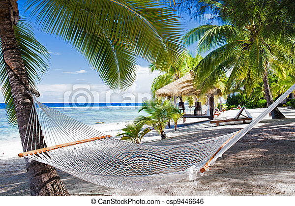 Empty hammock between palm trees on a beach - csp9446646