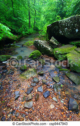 Tranquil Creek Scene in Alabama - csp9447943