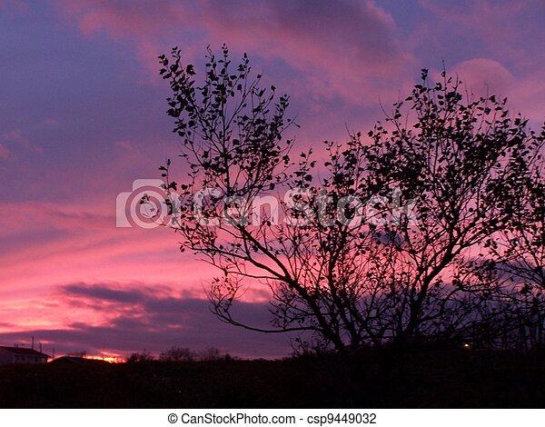 Sunset - csp9449032