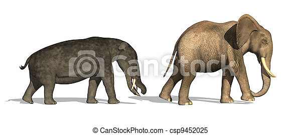 Platybelodon and Elephant Compared - csp9452025