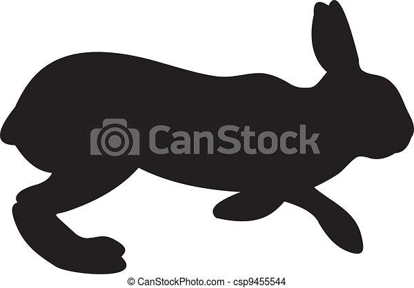 Rabbit vector - csp9455544