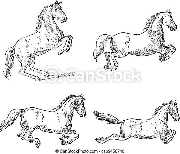 Classical Horse Dressage Movements, vintage engraving - csp9456740