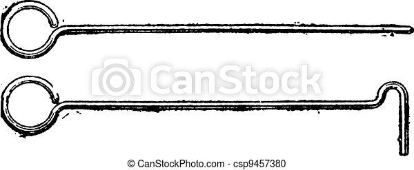 Ringard, vintage engraving - csp9457380