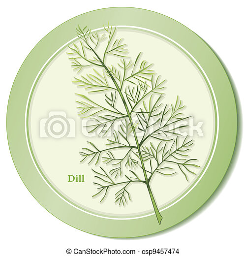 Dill Herb Icon - csp9457474