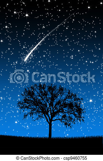 Tree Under Stars with shooting stars at night - csp9460755