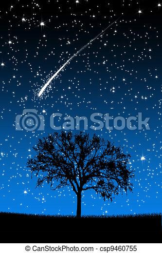 Tree Under Stars with shooting stars at night - csp9460755