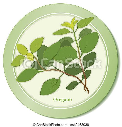 Italian Oregano Herb Icon - csp9463038