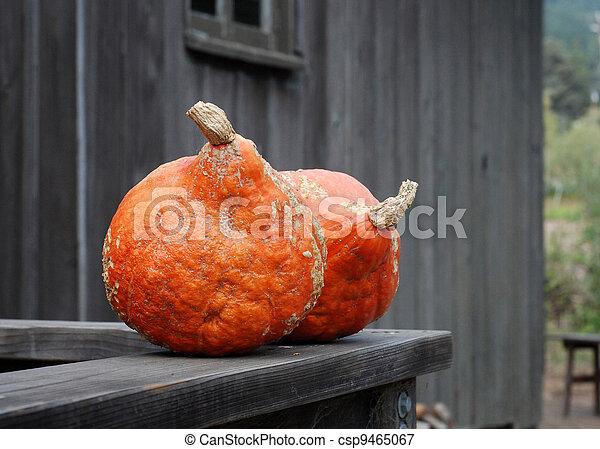 Pumpkins sitting on wood railing
