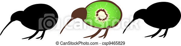 Three kiwi birds - csp9465829