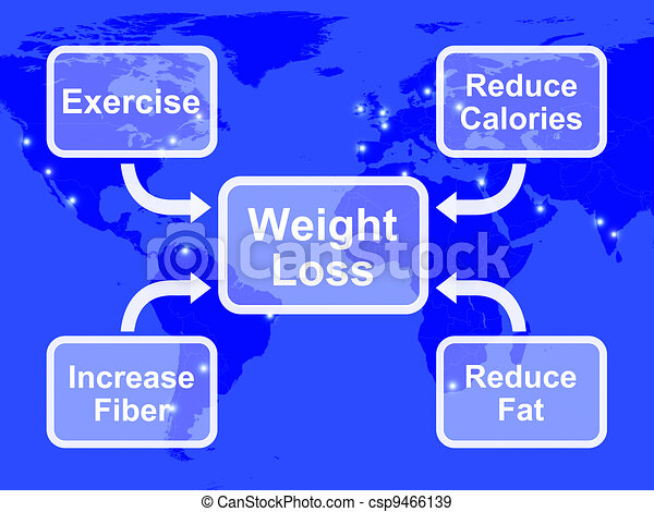 Weight Loss Diagram Showing Fiber Exercise Fat And Calories - csp9466139