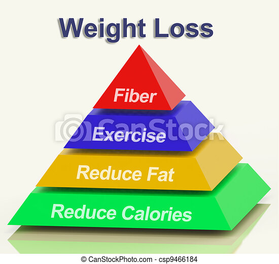 vecteurs 2nde exercises to lose weight