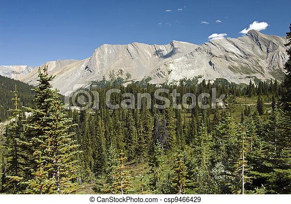 Canadian Rockies - csp9466429