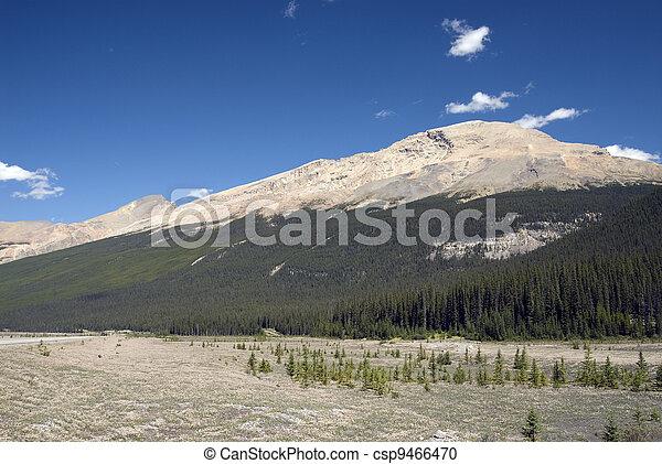Canadian Rockies - csp9466470