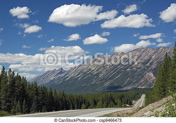 Endless Chain Ridge, Canadian Rockies - csp9466473