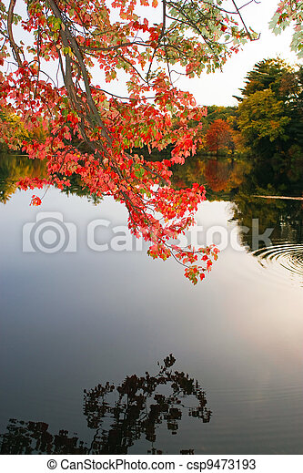 Colorful Fall Foliage Over the Water - csp9473193
