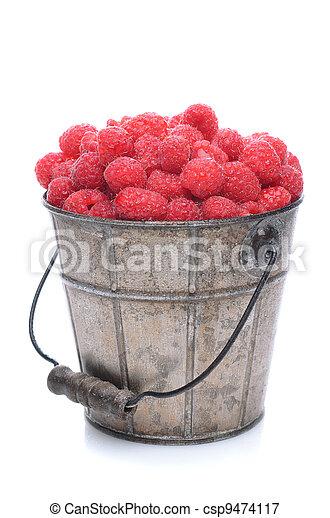 Pail of Fresh Picked Raspberries - csp9474117