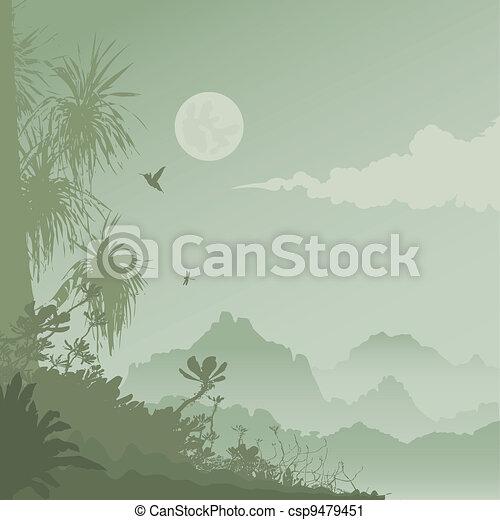 jungle - csp9479451