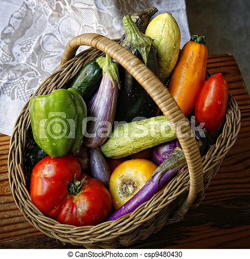 Basket with garden vegetables  - csp9480430
