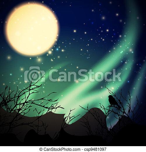 northern lights - csp9481097
