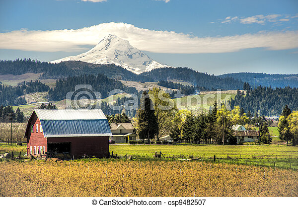 Red barn, apple orchards, Mt. Hood - csp9482507