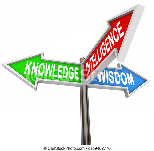 Knowledge Intelligence Wisdom Words on Arrow Signs - csp9482776