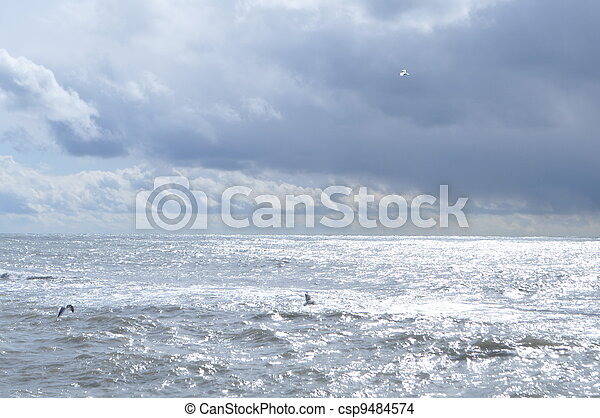 Overcast mystical Black Sea - csp9484574