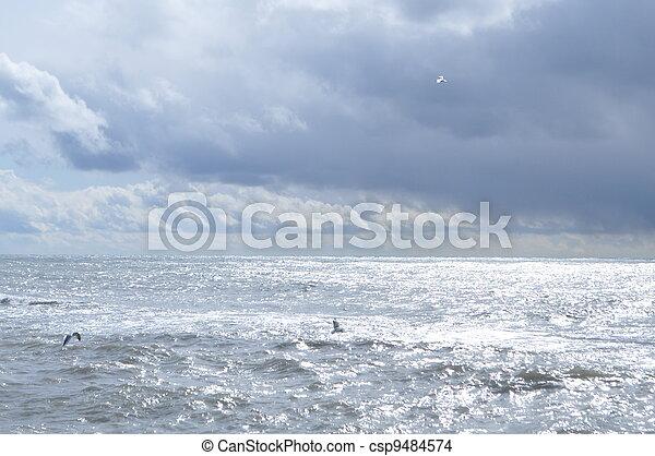 Overcast mystical Black Sea - csp9484574