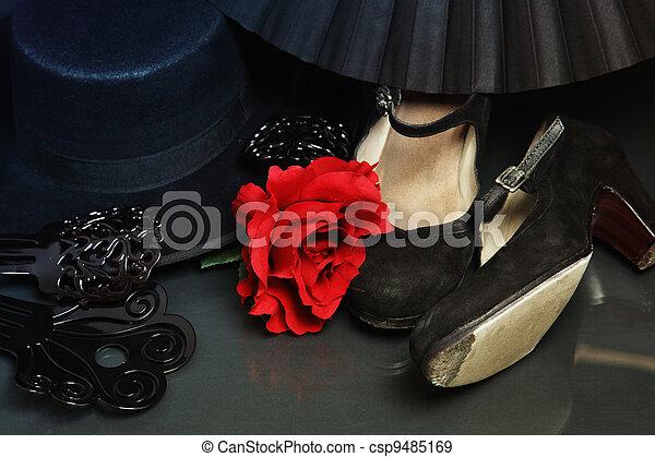 Flamenco accessories - csp9485169