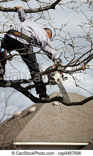 tree trimming - csp9487696