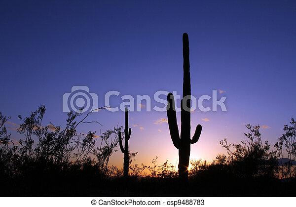 Arizona Sky sunset - csp9488783
