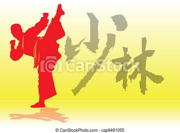 Chinese Kung-Fu. - csp9491055