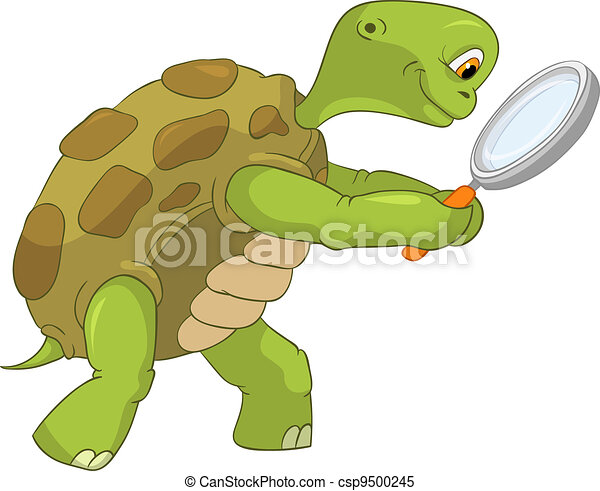 Funny Turtle. Finding. - csp9500245