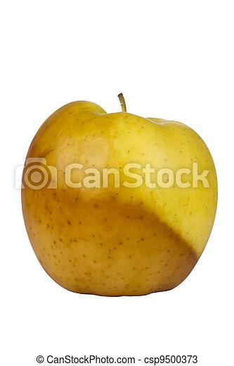 Decaying Golden Delicious Apple - csp9500373