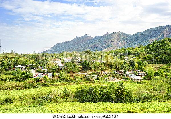Agriculture in Philippines - csp9503167