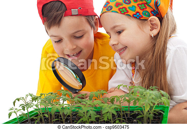 Kids learning to grow food - csp9503475