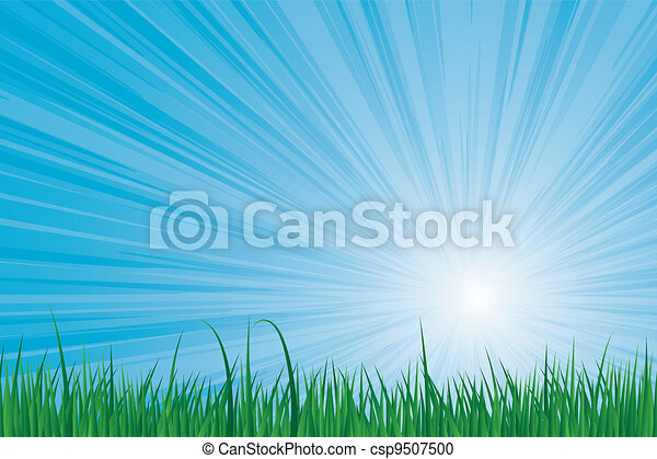 sunburst green grass - csp9507500