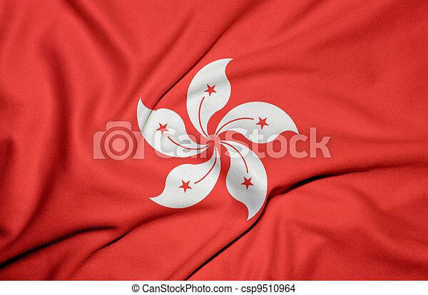 Hong Kong flag - csp9510964