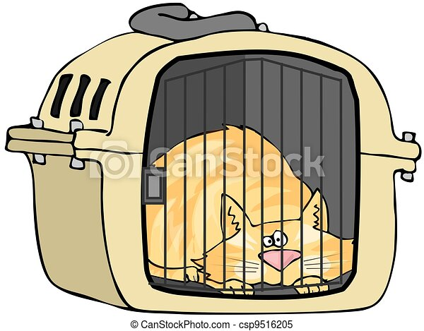 Cat In Pet Carrier - csp9516205