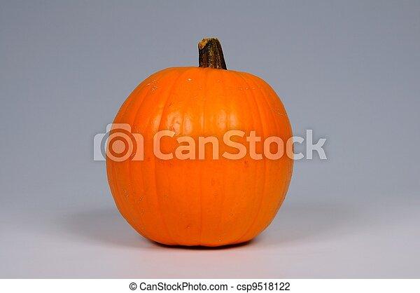 Whole pumpkin. - csp9518122