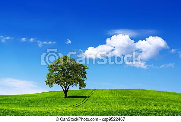 Eco landscape - csp9522467