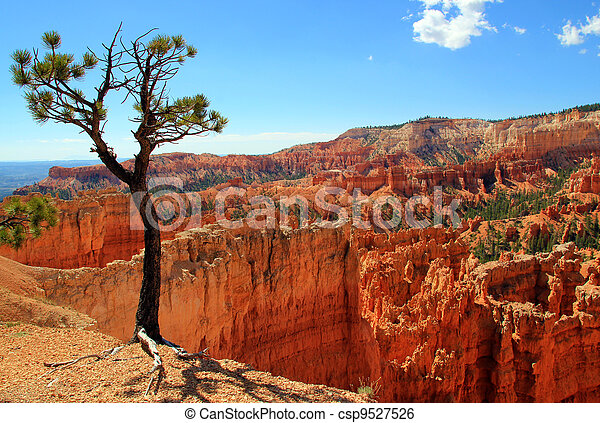 Bryce Canyon National Park, Utah, USA - csp9527526